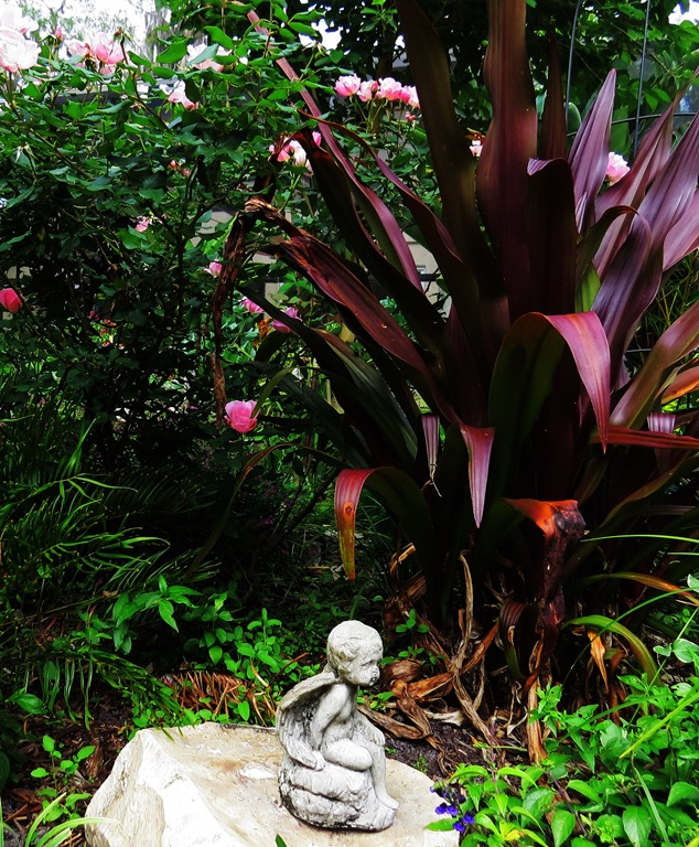 The Original Garden Has Remained Pretty Much The Same. Just In A Different  Place. Which Has Turned Out To Be A Better Place. The Queen Emma Crinum Has  ...